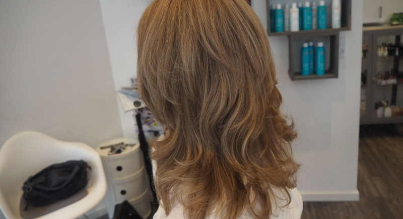 Salon Dechoix coloring and highlights