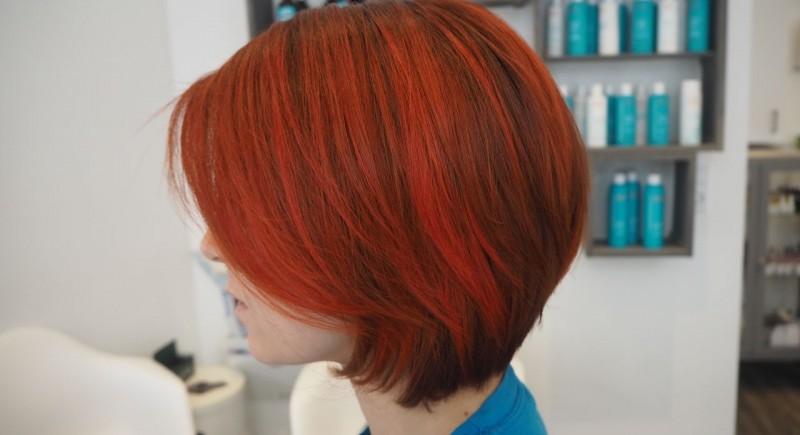 Salon Dechoix coloring